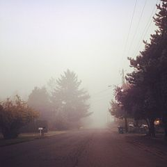 240px-Road_in_the_fog_3
